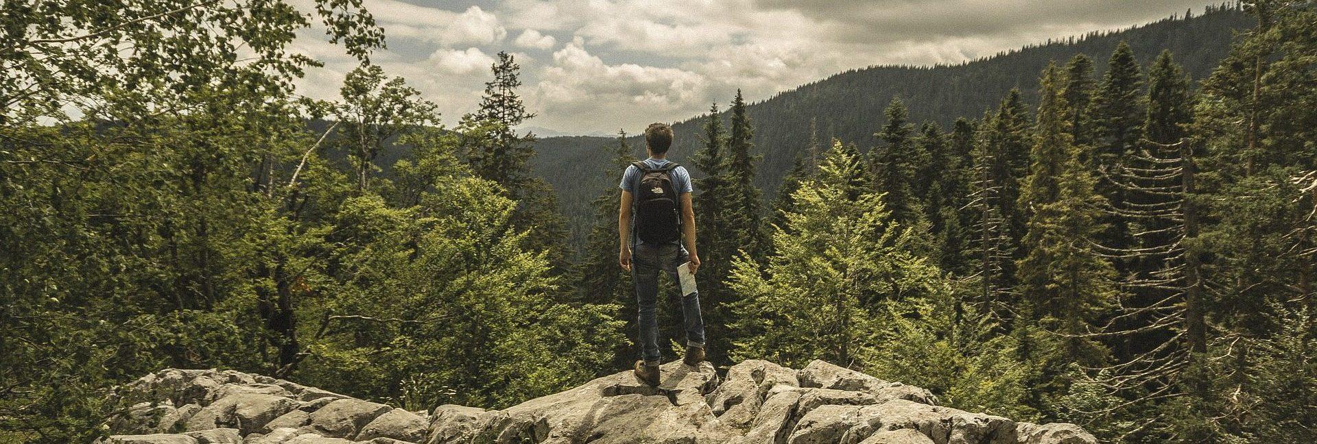 Ein Wanderer, mit einer Landkarte in der Hand, steht auf einem Fels und blickt in die Ferne.