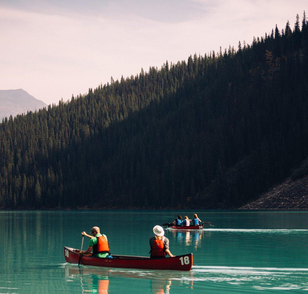 Zwei Kanus fahren auf einem See, entlag am bewaldeten Ufer.