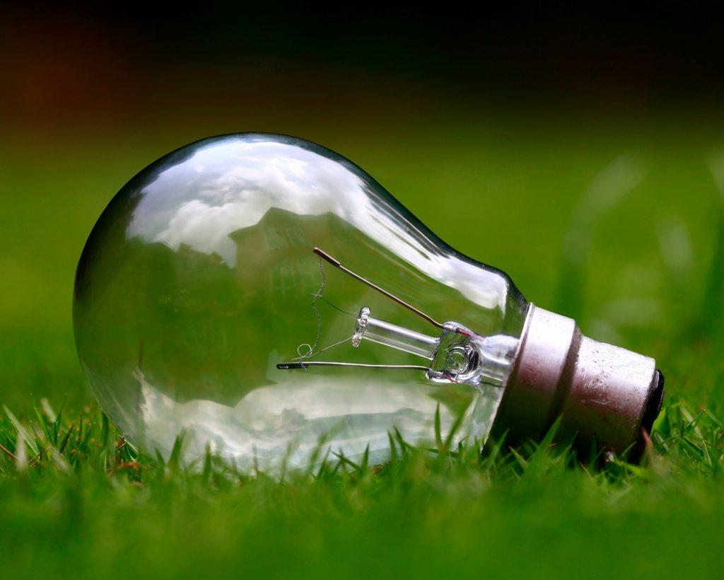 Eine Glühbirne liegt im Gras.