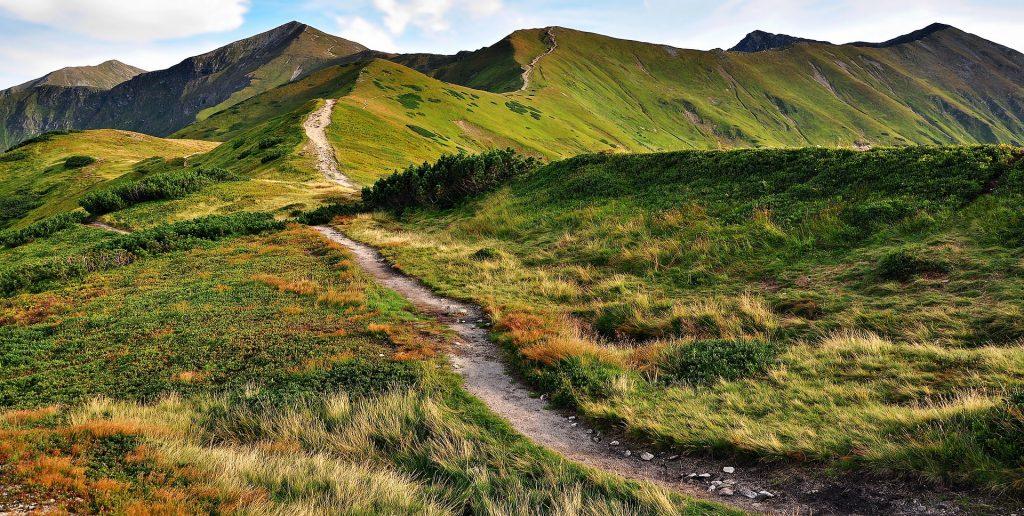 Ein schmaler Wanderweg auf den Gipfeln grüner Berge.