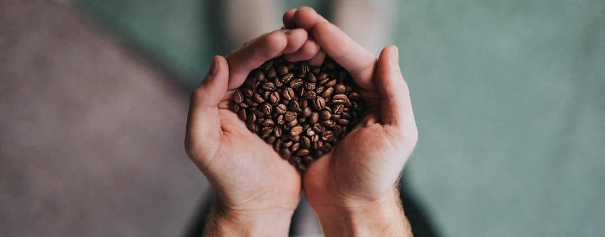 Hände halten Kaffeebohnen