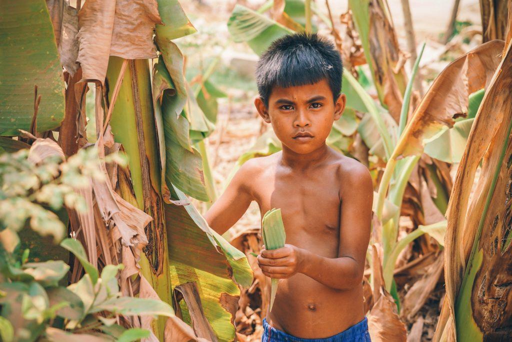 Asiatischer Junge zwischen Palmen