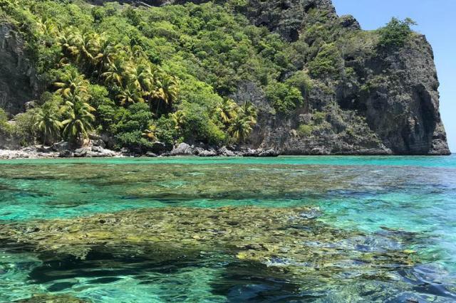 Bucht mit strahlend blauem Wasser und grünem Ufer © TourCert