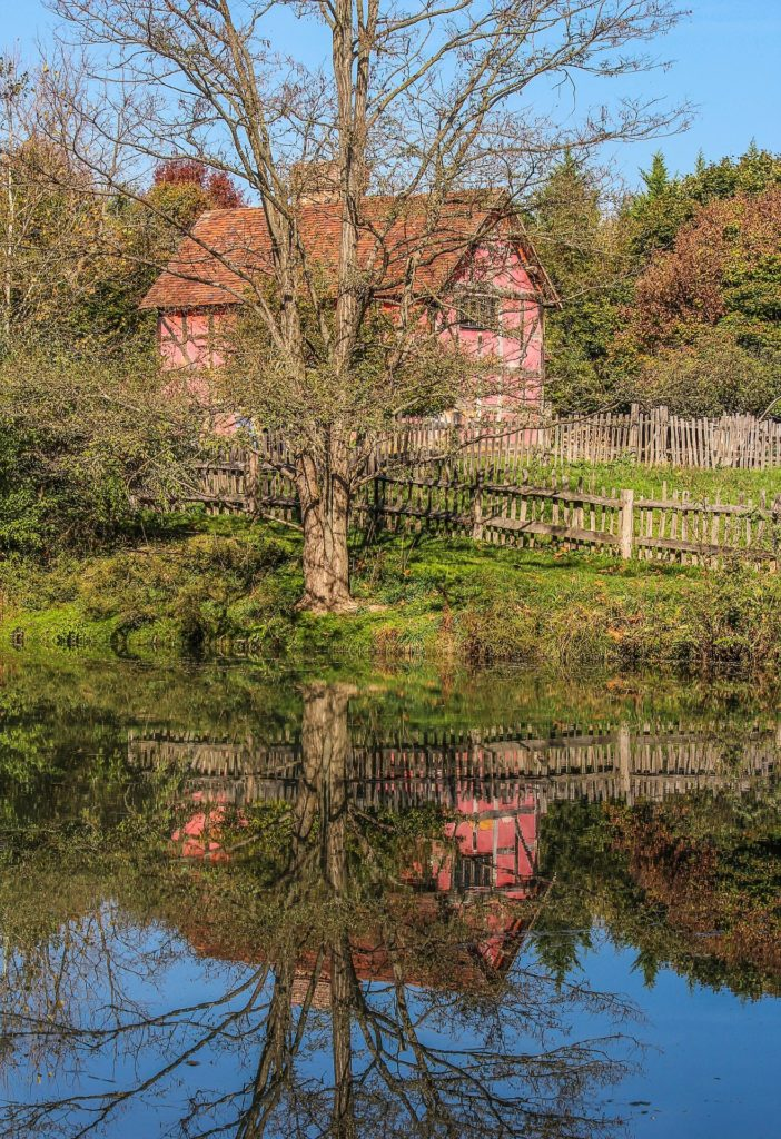 Ein schönes Fachwerkhaus steht hinter einem Baum am See.