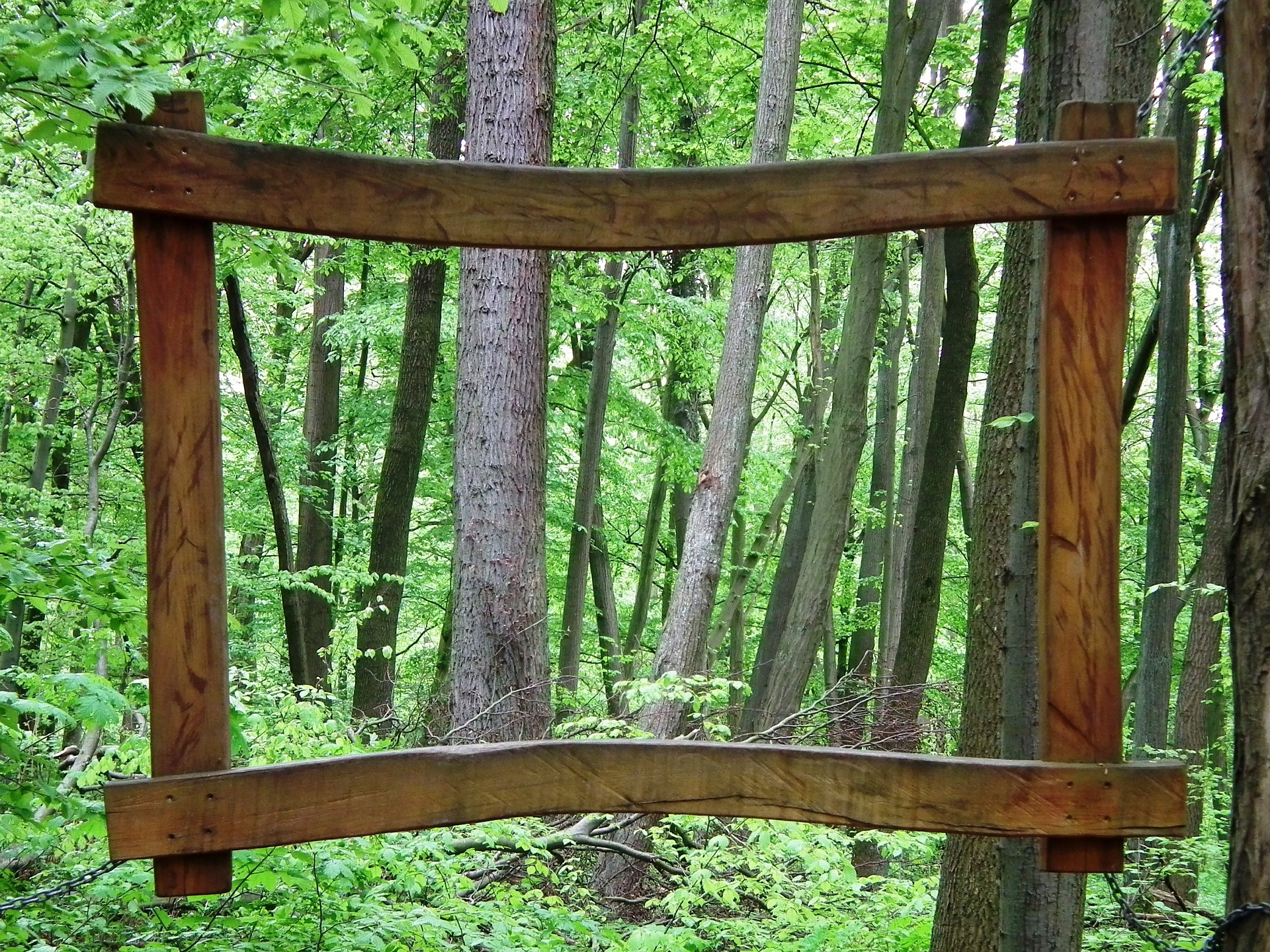 Holzrahmen vor einem Wald.