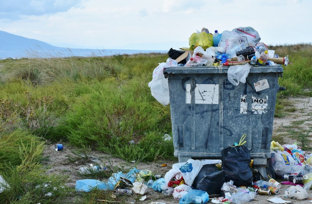 Überfüllter Mülleimer in der Natur