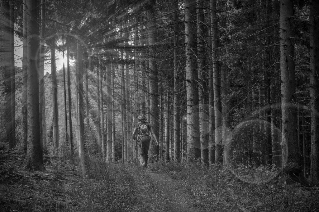 Wanderer der durch einen Wald läuft bei Sonnenlicht Schwarz-Weiß